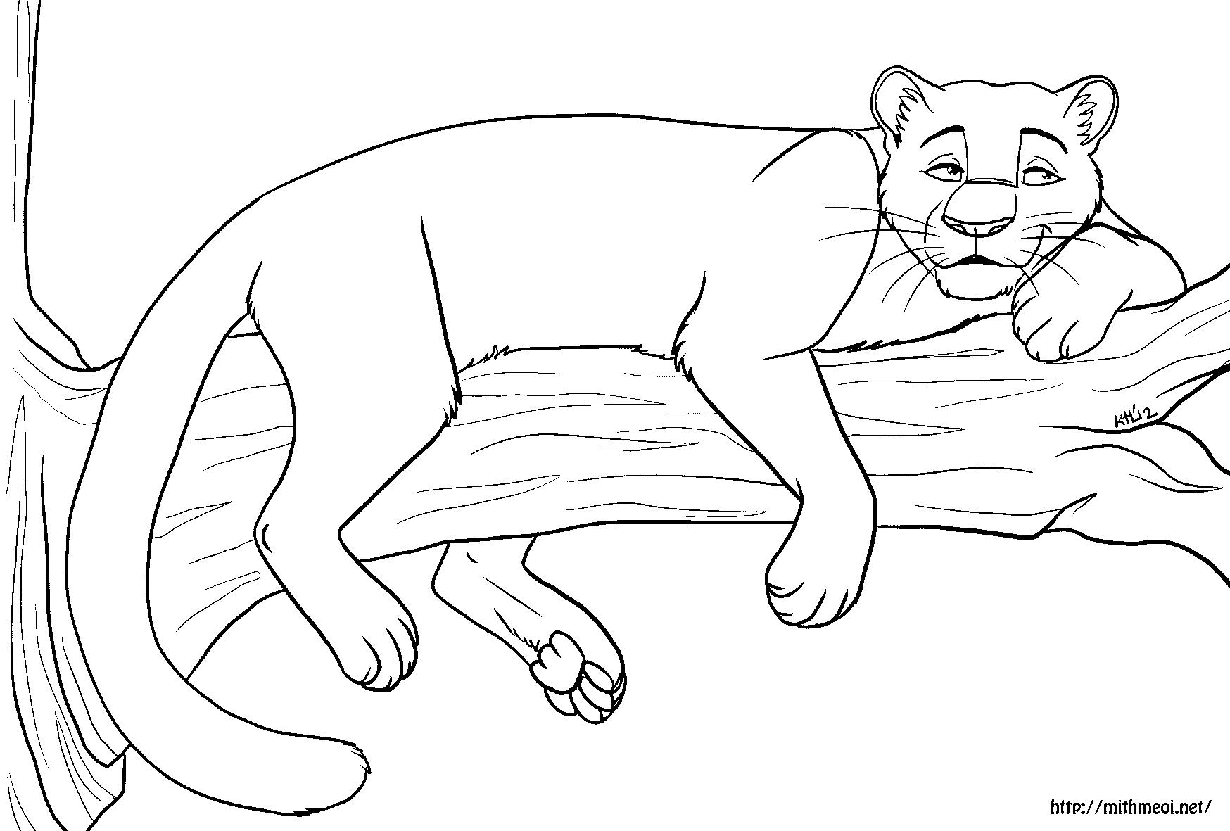 Line Drawing Jaguar : Line art mithmëoi
