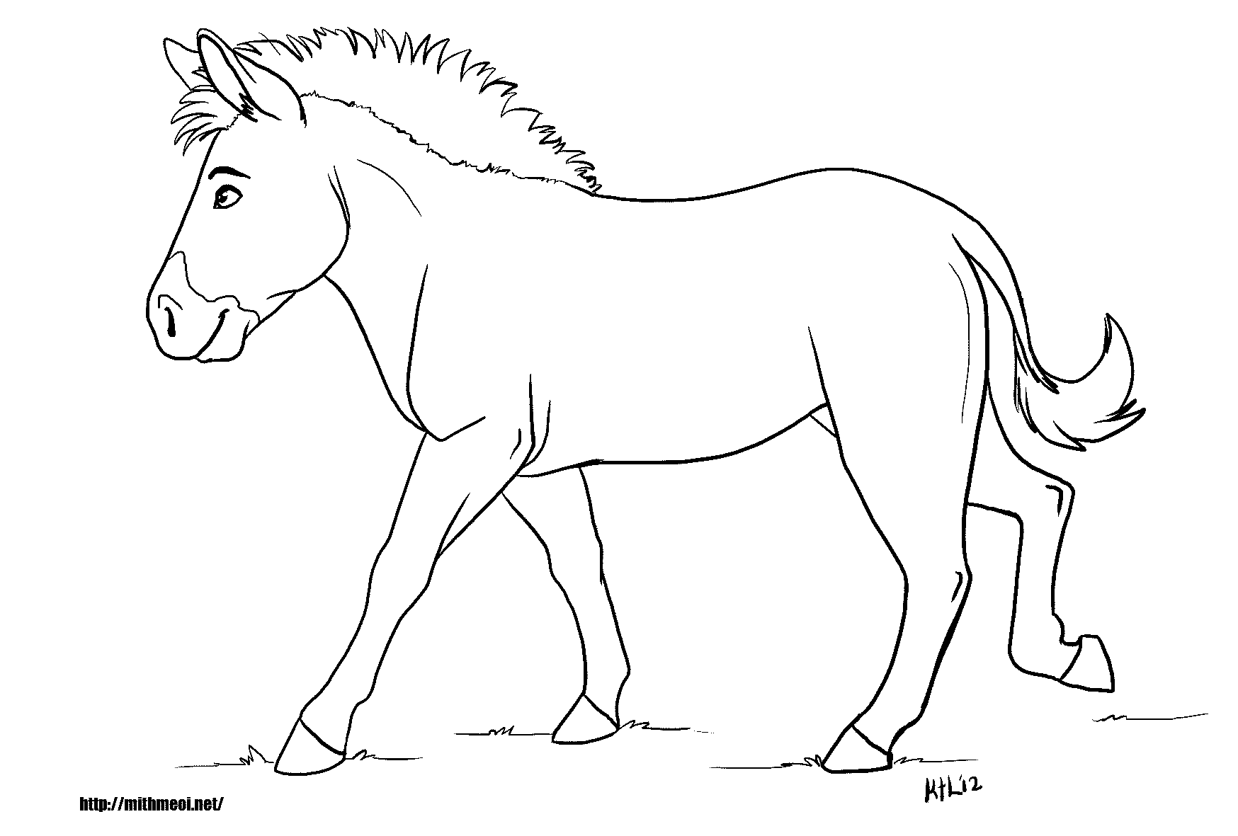 Free Coloring Pages Of Outline Of Zebra